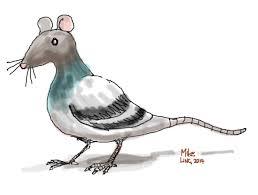 flying rats hanze journalism