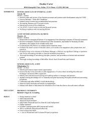 ... Senior / Audit Associate Resume Sample as Image file