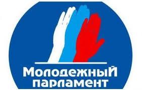 Юная политика молодежные политические организации современной России  Выставка Юная политика молодежные политические организации современной России