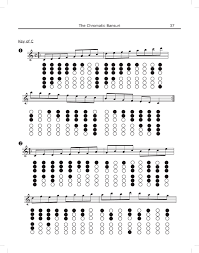 How To Play Bamboo Flute Finger Chart The Chromatic Bansuri The Chromatic Bansuri