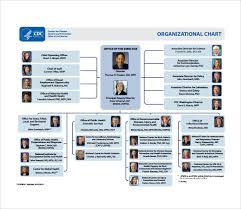 Organizational Chart Samples Jasonkellyphoto Co