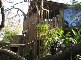 Top Treehouse Accommodation In NSW  EllaslistTreehouse Accommodation