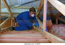 Fibreglass Insulation Stock Photos & Fibreglass Insulation Stock ... & An apprentice builder installs fibreglass insulation in the roof - Stock  Image Adamdwight.com