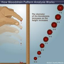 Blood Spatter Patterns Delectable Basics Of Blood Properties Of Blood HowStuffWorks