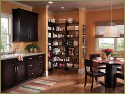 Portable Kitchen Cabinets Furniture Lowes In Stock Cabinets Corner Pantry Cabinet