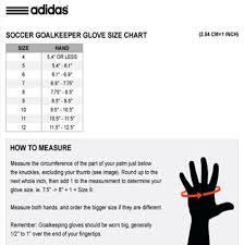 Lacrosse Glove Size Chart Ageless Junior Goalie Glove Size Chart 2019