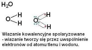 Określ rodzaj wiązania występującego w wodzie. Określ, w jaki sposób  powstaje, wymień jego właściwości fizyczne – zadania, ściągi i testy –  Zapytaj.onet.pl