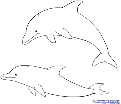 Cute Dolphin Coloring Pages Dolphin Coloring Pages Cute Dolphin