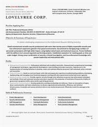 Executive Resume Writers Extraordinary Federal Resume Writer Photo Federal Resume Writers Professional