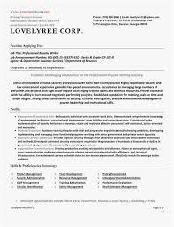 Executive Resume Writers Extraordinary Federal Resume Writer Photo Federal Resume Writers Professional