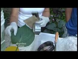 leaf casting garden time tv