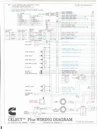 m11 wiring diagram cummins m11 ecm wiring diagram 1997 \u2022 wiring 1999 freightliner fld120 wiring diagram at Freightliner Fld120 Wiring Diagrams