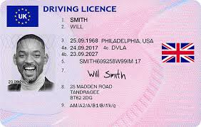 - Megabillsdocs com Drivers License