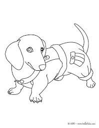 Dachshund Coloring Page Puppies Coloring Page Cartoon Puppy Coloring
