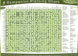 Companion Planting Chart 2017 Frisch Farms Vancouver
