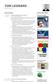 internet marketing consultant resume samples online marketing resume sample