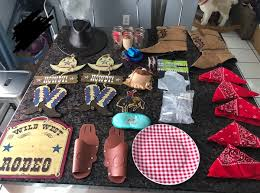 Cow Boy Party Decor Cow Girl Party Supplies Decorations Lot