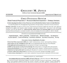 Resume Headline Example Of A Strong Examples The Proper Leadership Beauteous Resume Headline For Financial Analyst