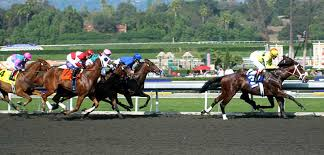 Breeders Cup Tickets Cheap Breeders Cup Tickets