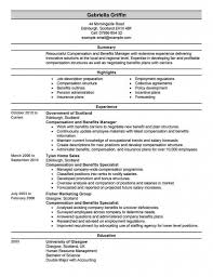Human Resources Director Resume Executive Summary Manager Resumes