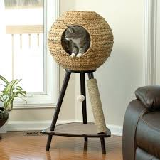 cool cat tree furniture. Cool Cat Towers Best Tree Without Carpet Ideas For Sale In Canada Furniture S