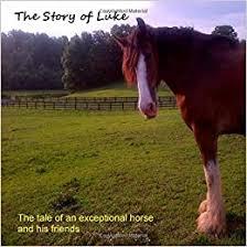 The Story of Luke: Craig, Priscilla: 9781304621696: Amazon.com: Books