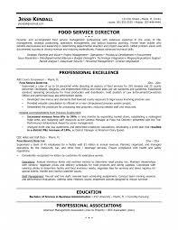Food Service Job Description For Resume Regional Sales Manager Job Description Resume District Bunch Ideas 11