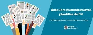Plantilla De Curriculum Vitae Basico