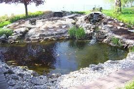 Small Picture 28 Wonderful Backyard Pond Ideas 3663