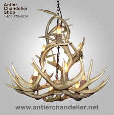 real antler mule deer 9 light chandelier mdsp4m