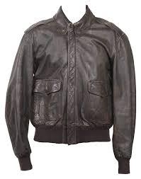 how to clean mildew from a leather coat