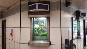 tube office. Putting Plants In A Tube Station Isn\u0027t That Unusual, As The Annual Underground Bloom Competition Shows, But Here They Are An Office .