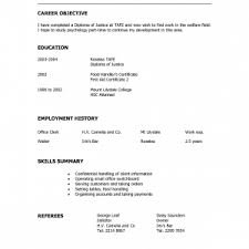 skills summary resume sample format skills summary resume sample template awesome functional skills resume gdragons completed resume examples