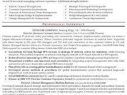 Fmcg Sales Manager Resume Sample Free Resume Example And Writing