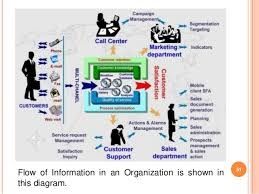 Information Systems And Organization Essay Coursework Example