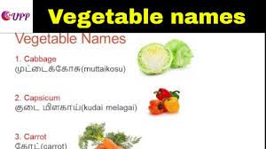 indian vegetables names in english with pictures. Delighful Indian Learn Tamil Through English  Vegetable Names And Indian Vegetables In With Pictures