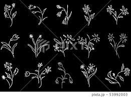 ラベンダー 花 イラスト かわいいのイラスト素材 Pixta