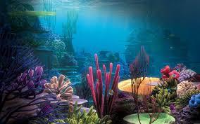 Aquarium Wallpaper Hd 8 Hd Wallpapers Mafia