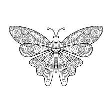 Hand Getrokken Geïsoleerde Doodle Vlinder Royalty Vrije Cliparts