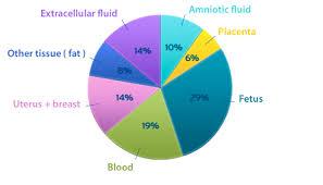 Hydration In Pregnancy And Breastfeeding Hydration For Health