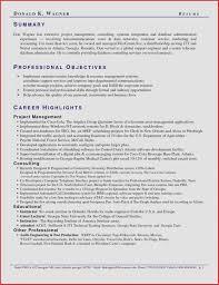 Resume Critique Service Best Of Resume Critique Unique Resume