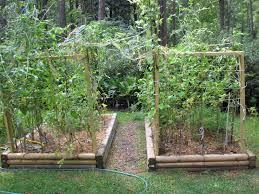 Lawn \u0026 Garden : Organic Vegetable Gardening Ideas Home And ...