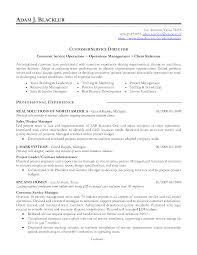 Customer Service Officer Resume Sample Customer Airport Customer Service Resume 30