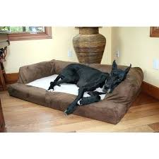 big dog furniture. Fancy Big Dog Furniture