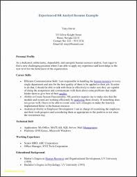 Sql Server Experience Resumes Resume Templates Work Experience Template Email