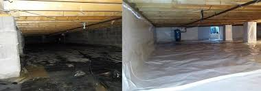 This Crawl Space Had Four Inches Of Standing Water In It When We Arrived Storage A51
