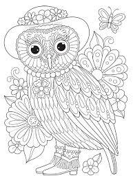 Owl Coloring Book 16336 Luxalobeautysorg