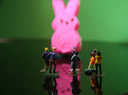 real sightings of the easter bunny. Perfect Bunny Easter Bunny Sighting  By Katerha With Real Sightings Of The Y