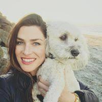 Jill Watts's email & phone | MWI Veterinary Supply's Senior Strategic  Accounts Manager email