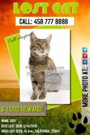 Missing Cat Poster Template Wanted Poster Templates Postermywall